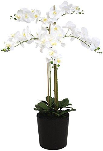 Decoline riesige künstliche Orchidee mit weißen Blüten 120cm