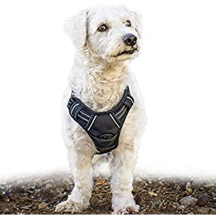 Customer reviews Rabbitgoo Adjustable Refletive Dog Harness No-Pull Outdoor Pet Vest with Handle Easy Control for Small Dogs & Durable Material Black