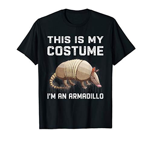 This Is My Costume I'm An Armadillo T-Shirt Funny Halloween
