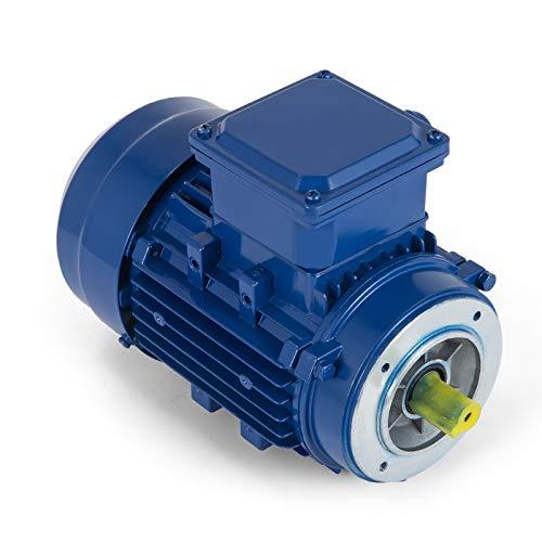 OldFe 0.25KW Wechselstrommotor Elektro Motor 230V Drehstrommotor Motor 50 Hz Asynchronmotor Wechselstrommotor