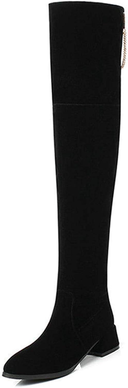 DOSOMI Womens Winter Elegant Regular Wide Platform Square Heel Over-The-Knee Boots