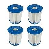 Panthem Summer Pool Papie - Cartuchos de filtro de cartucho de papel tipo I (4 unidades)