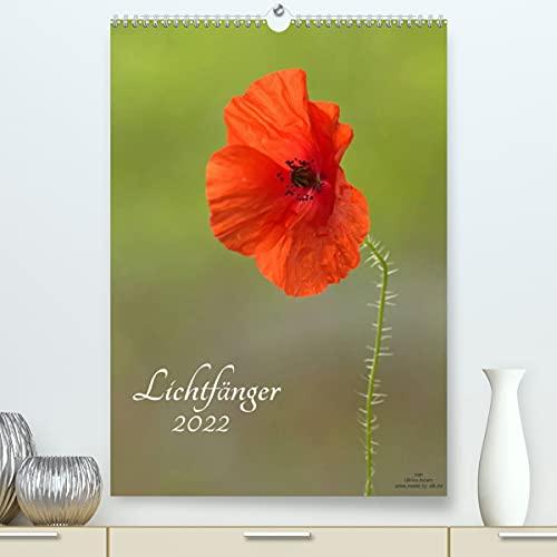 Lichtfänger (Premium, hochwertiger DIN...