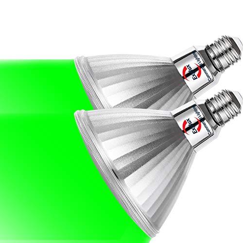 Explux LED PAR38 Green Flood Light Bulbs, Dimmable, Full-Glass Weatherproof, 120W Equivalent, 2-Pack
