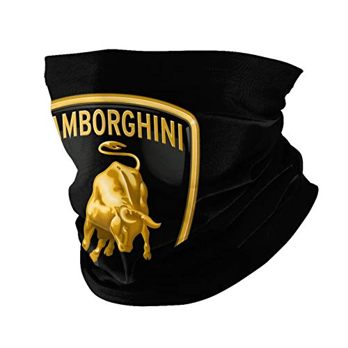 La-mbo-rgh-ini Face Mask, Bandana Neck Gaiter Balaclava Summer Cooling Breathable for Cycling Fishing Outdoors Black
