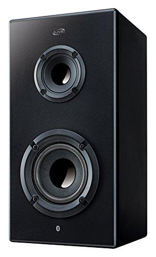 iLive Bluetooth Portable Speaker, Black