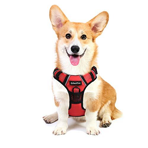 PetiFine Hundegeschirr, kein Ziehen, Haustierweste mit 2 Leinenclips, reflektierend, verstellbar, weich gepolstert, stabiler Griff, einfache Kontrolle für X-Small/Small/Medium/Large Hunde (M, Rot)