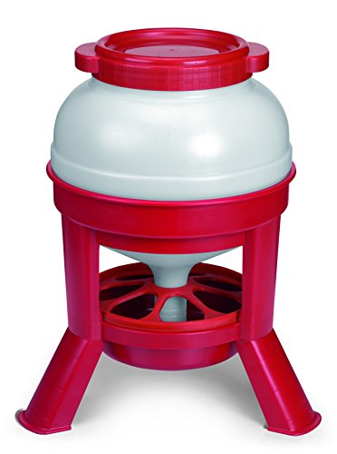 Little Giant Plastic Dome Feeder (35 Lb) Heavy Duty Plastic Gravity Fed Poultry Feed Container Tank (Red) (Item No. DOMEFDR35)
