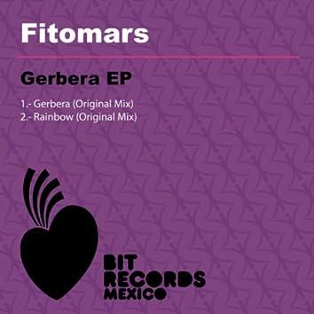 Gerbera EP