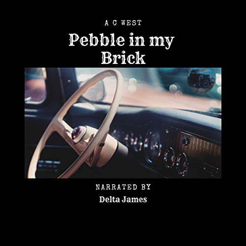Pebble in My Brick                   By:                                                                                                                                 Anne C. West                               Narrated by:                                                                                                                                 Delta James                      Length: 6 mins     Not rated yet     Overall 0.0