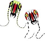 JSJJAYH Cometa Gran folleto fácil de ser Suave para niños, 30 Pulgadas de Ancho con Dos de 130 Pulgadas de código Largo Playa Exterior (Colore : 2pcs)