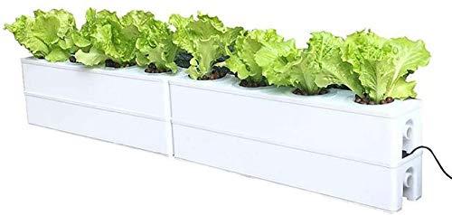 LJYY Hydrokultur-Wachstumssystem, automatisches Wasserkreis-Bewässerungssystem, Hydrokultur-Gartenpflanzer, schnell zu Hause wachsen