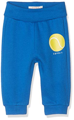 ESPRIT KIDS Baby-Jungen RP2300207 Knit Pants Jogginghose, Blau (Bright Blue 442), (Herstellergröße: 80)