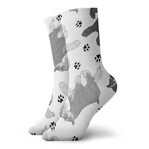 Trotting Miniatur-Schnauzer und Pfotenabdrücke – weiße Socken für Frauen, lustige Socken, 30 cm