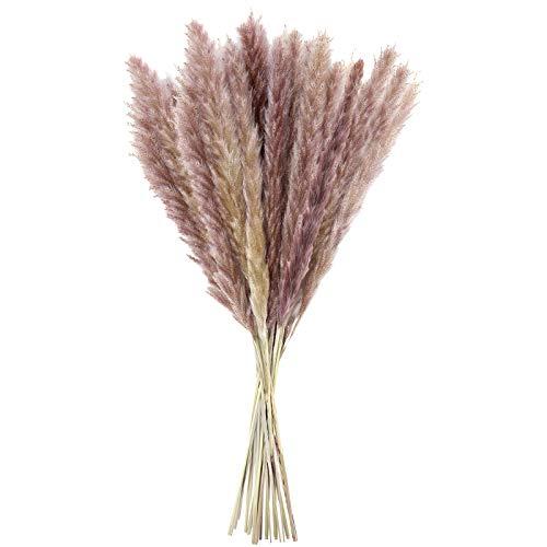 LEBEXY Pampasgras Getrocknet Trockenblumen Deko 15 Stück, Vasen Getrocknete Blumen 44cm, Blumenstrauß Boho Deko für Inneneinrichtung Schlafzimmer Wohnzimmer Balkon Badezimmer