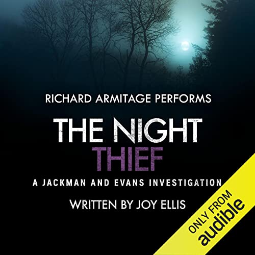 The Night Thief cover art