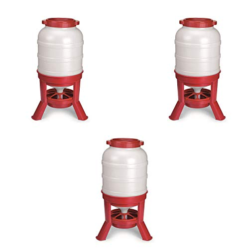 Little Giant Plastic Dome Feeder (60 Lb) Heavy Duty Plastic Gravity Fed Poultry Feed Container Tank, Red (3 Pack)