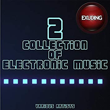 Collection Of Electronic Music, Vol. 2