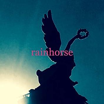Rainhorse