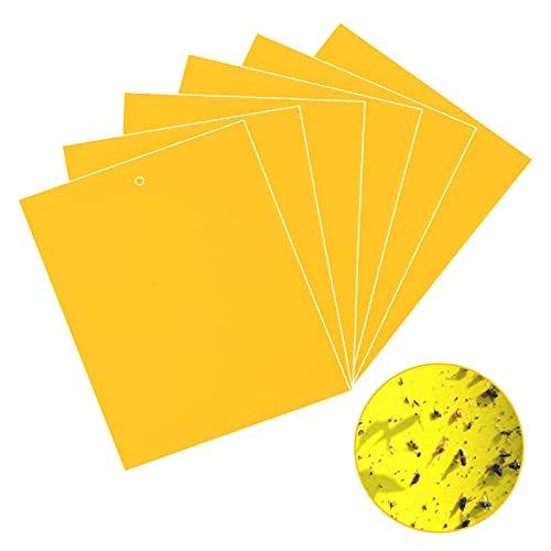 Funmo - 30 Pcs Pièges à Insectes, Papier Collant Double Face, Autocollants jaunesm, pour Insectes Volants