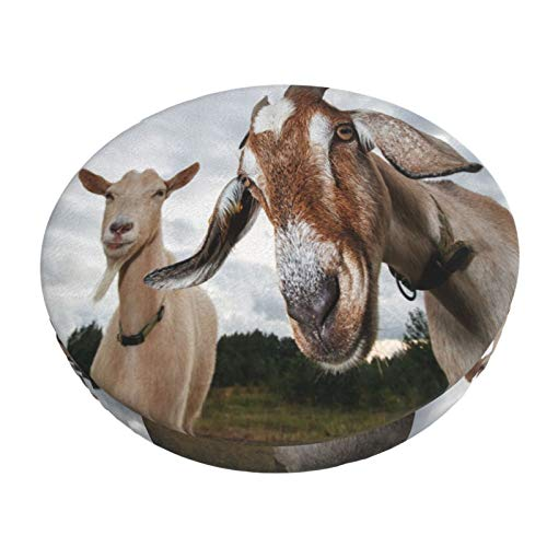 Round Bar Stool Cushions Covers Funny Goats Watching Cute Sheep Animal Non Slip Round Seat Cover Protector Stretch Barstools Velvet Slipcover for Circle Medical Spa Drafting Work Massage Chair
