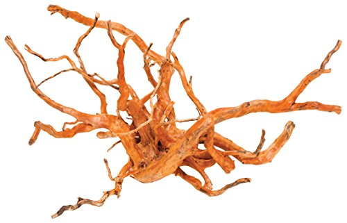 Pisces AM-GOLD018 14'-18' Medium Spiderwood,(Natural item)