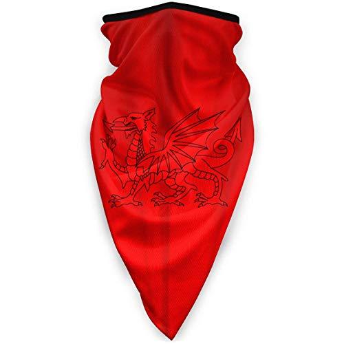 NA Masque de sport coupe-vent Dragon Dragon de plein air Masque de ski Masque de bouclier écharpe Bandana Hommes Femme