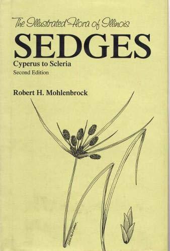 Sedges: Cyperus to Scleria