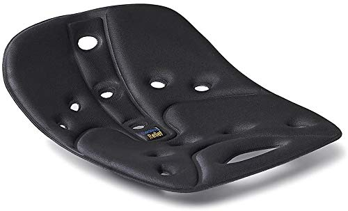 BackJoy SitSmart Fabric Posture Cushions   Lumbar Support for Lower Back Pain   Improve Posture   Car/Office/Hard Surface/Desk Chairs   For Adults (Sitsmart Relief, Black)