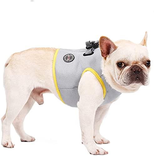 Kühlgeschirr für Hunde, Brustgeschirre Outdoor für Hunde im Sommer, Atmungsaktive Weste Kühljacke Sonnenschutz Haustier Mantel, 7 Größen für Hunde Aller Größen erhältlich (M)