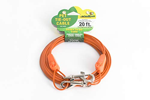 IntelliLeash Products Tie Out Cable for Dogs (35 lb/20')