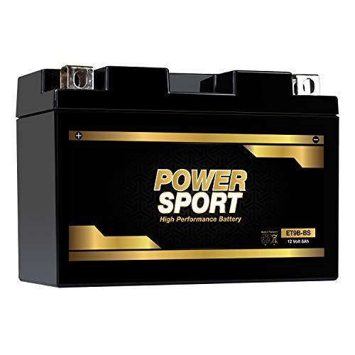 ExpertPower YT9B-BS 12v8ah lead_acid_battery