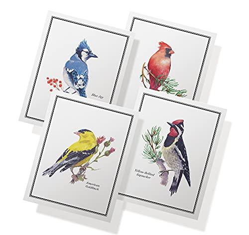 Blank Bird Note Cards