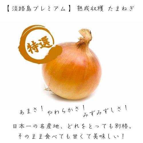 送料込 甘くておいしい 兵庫県産 淡路 玉ねぎ 10kg箱