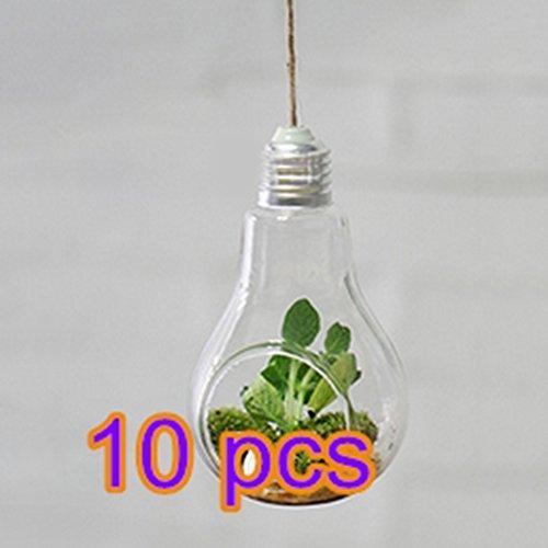 Qinlee Pots à Suspendre Vase en Verre Transparente pour Plantes Fleurs Décoration de Jardin Maison(Pack of 10)