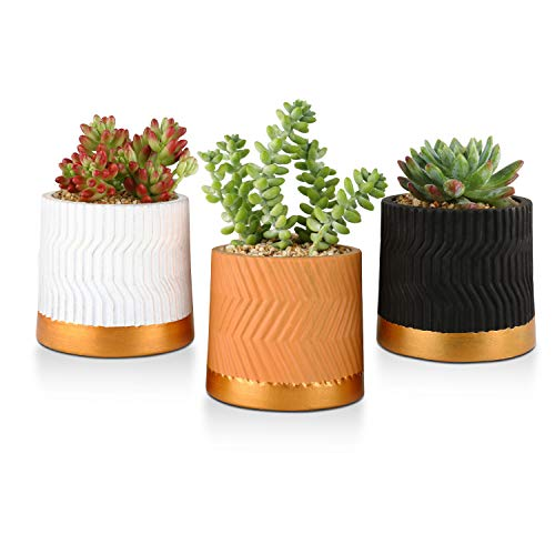 OppsArt Cement Succulent Planter Pots Round 4 Inch Set of 3, Small Indoor Concrete Cactus Bonsai Pot Cylinder Home Office Table Desk Window Decoration Handicraft Wedding