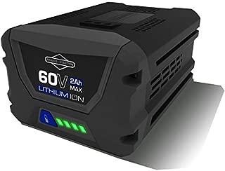 Best snapper 60v battery 4ah Reviews