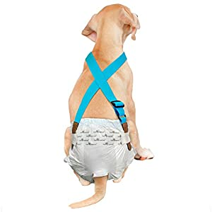 Paw Inspired Dog Diaper Suspenders | Belly Bands Canine Harness | Durable Dress & Diaper Keeper | Keep Diaper on Your Dog, for Small Medium and Large Dogs (S/M, Blue)