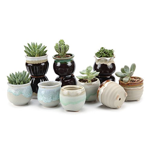 T4U Small Ceramic Succulent Planter Pots with Drainage Hole Set of 12, Sagging Glazed Porcelain Handicraft as Gift for Mom Sister Aunt Best for Home Office Restaurant Table Desk Window Sill Decoration