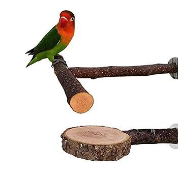 Nynelly 2pcs Perchoirs en Bois Naturel pour Perroquet,T Supporter Perchoirs en Bois Naturel,Cercle Perchoirs interactifs pour Cage à Oiseaux, Jouets pour Oiseaux