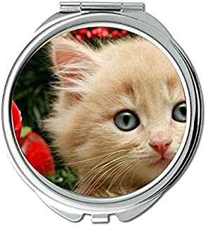Mirror,Compact Mirror,Christmas Ornaments Kitten Animal Christmas Cat mirror for Men/Women,1 X 2X Magnifying