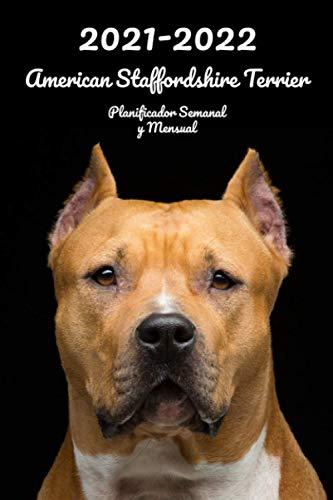 2021-2022 American Staffordshire Terrier Planificador Semanal y Mensual: 152 Páginas | Tamaño A5 | 26 Meses | Una semana por página | Planificador | Perro | En Español | Diario de bolsillo