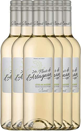 VINELLO 6er Weinpaket Weißwein - Fleur de d'Artagnan Blanc 2020 - Plaimont mit Weinausgießer | trockener Weißwein | französischer Sommerwein aus Sud Ouest | 6 x 0,75 Liter