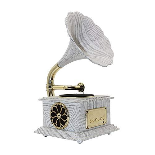 CJVJKN Mini Gramophone Record