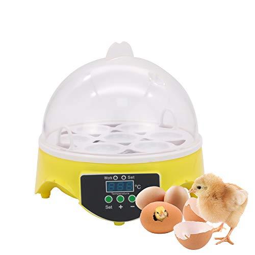 JoaSinc Eggs Inkubator Mini 7 Eier vollautomatischer Geflügelhüpfer Maschine mit Temperaturregelung, kleiner allgemeiner digitaler Brutkästen zum Schlüpfen von Hühnern,Enten,Wachteln,Vögeln
