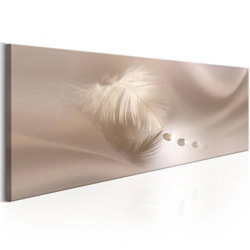 murando - Bilder 150x50 cm Vlies Leinwandbild 1 TLG Kunstdruck modern Wandbilder XXL Wanddekoration Design Wand Bild - Abstrakt Feder Wassertropfen Digital b-C-0160-b-a