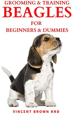 GROOMING & TRAINING BEAGLES FOR BEGINNERS & DUMMIES: The Ultimate Guide To Buying, Grooming, Socializing And Taking Care Of Them (English Edition)