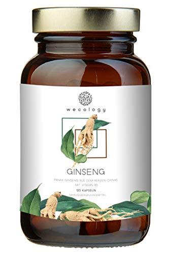 WECOLOGY® Panax Ginseng Kapseln Hochdosiert - 120 Stück für 4 Monate - Weißer Ginseng C.A. Meyer - Beste Qualität für Körper und Geist - Vegan mit Vitamin B5