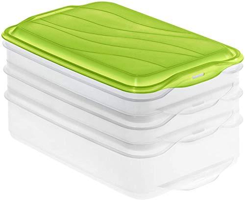 Rotho Rondo 3-teilige Vorratsdose 2x 0,75l und 1x 1,35l mit Deckel, Kunststoff (PP) BPA-frei, grün/transparent, 2 x 0,75l + 1 x 1,35l (23,5 x 15,5 x 11,5 cm)