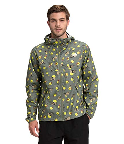 The North Face Men's Cyclone Jacket, Agave Green Valley Sun Print, L